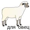 машинки для стрижки овец, лошадей, коров